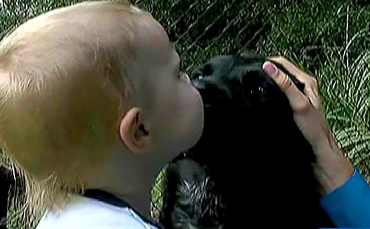 baby kisses dog