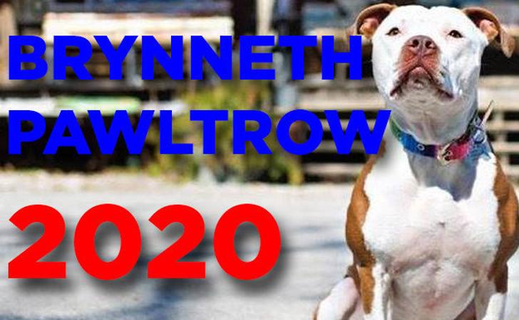Brynneth Pawltro